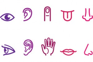 stock-illustration-5622861-five-senses-icons